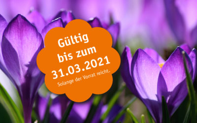 Frühjahrs-Angebote